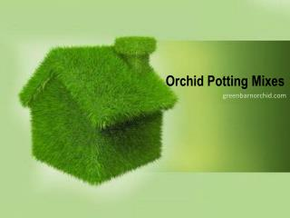 Green Barn Orchid Supplies |Orchid Mixes