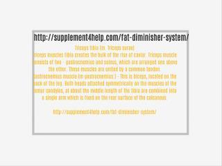 http://supplement4help.com/fat-diminisher-system/