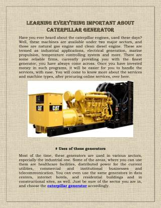 Learning Everything Important About Caterpillar Generator