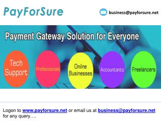 payment gateway for tech support