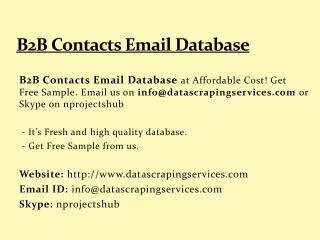 B2B Contacts Email Database