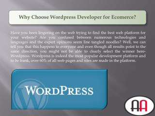Why Choose Wordpress Developer for Ecomerce?