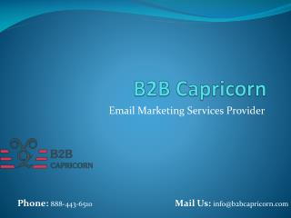 Email Marketing Services Provider - B2B Capricorn
