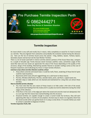Pre Purchase Termite Inspection Perth