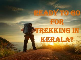 Enjoy Trekking in Kerala