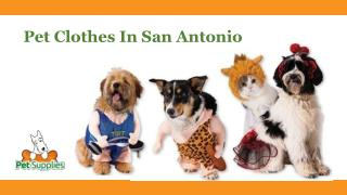 Pet Clothes In San Antonio