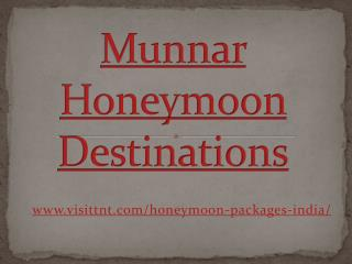 Munnar - Best Honeymoon Place in india