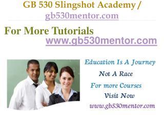 GB 530 Slingshot Academy / gb530mentor.com