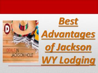 Best Advantages of Jackson WY Lodging