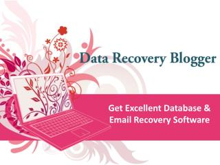 Computer Data Recovery Blogger