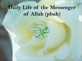 Daily Life of the Messenger of Allah pbuh