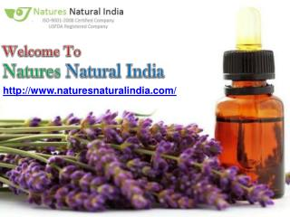 Online Premum Organic Essential Oils Suppliers