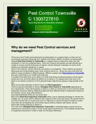 Pest Control Townsville