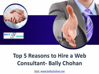 Top 5 Reasons to Hire a Web Consultant- Bally Chohan