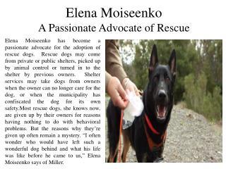 Elena Moiseenko a Passionate Advocate of Rescue