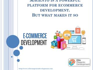 Magento is a powerful platform for ecommerce development. But what makes it so?