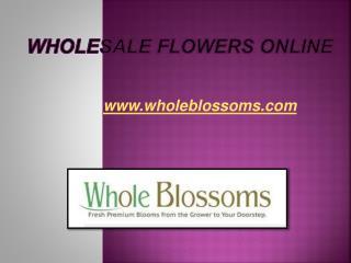 Wholesale Flowers Online - www.wholeblossoms.com