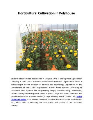 Horticultural Cultivation in Polyhouse