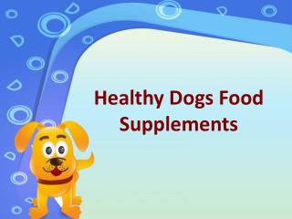 Healthy Dogs Food Supplements