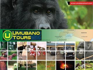 Volcanoes national park tour Rwanda