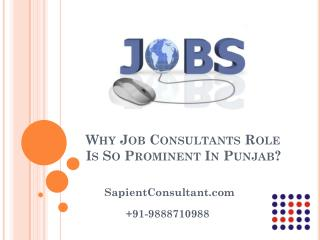 Why Job Consultants Role Is So Prominent In Punjab?