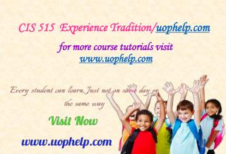 CIS 515  Experience Tradition/uophelp.com