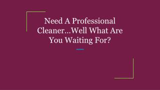 Need A Professional Cleaner…Well What Are You Waiting For?