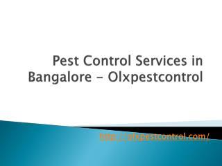 Pest control services, 9845012346, Bangalore