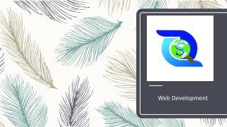 Website Development & Web Application Development | SEOCZAR