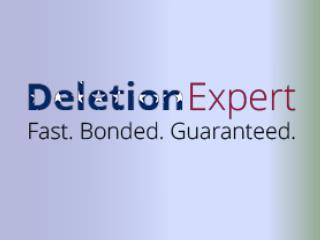 What Is the Fast-Track Credit Sweep from Deletion Expert?