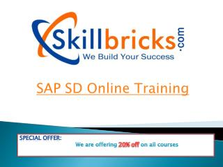 Best SAP SD Online Training Sevices at SkillBricks.com