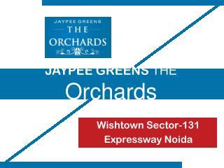 Jaypee Orchards Wishtown Sector 131 Expressway Noida