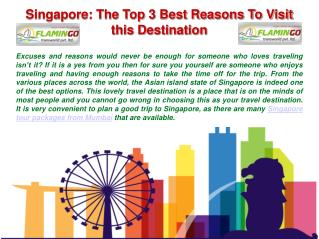 The Top 3 Best Things To Visit Singapore with Flamingo