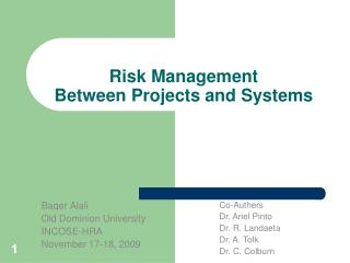 Risk Management  Between Projects and Systems