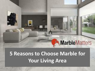 Five Reasons to Choose Marble For Your Living Area