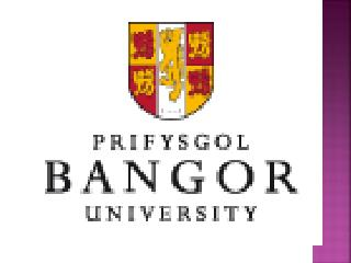 Bangor University Consultants - Global Opportunities Delhi