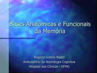 Bases Anat micas e Funcionais da Mem ria