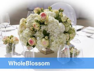 Wholesale Flowers - www.wholeblossoms.com