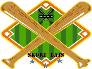 Bats Rent Baseball Bats
