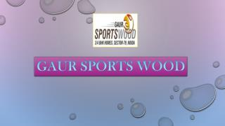 Gaur Sports Wood Residential Apartment in Noida