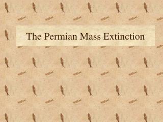 The Permian Mass Extinction