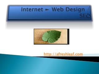 Web Developers Delray Beach