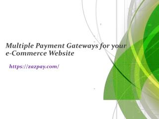 Multiple Payment Gateways for your e-Commerce Website
