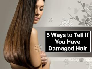 5 Ways to Tell If You Have Damaged Hair