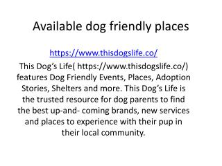 Available dog friendly places