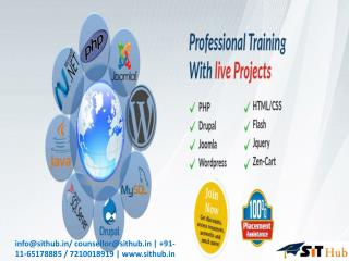 Web Designing training course Institute in dwarka, Uttam Nagar, Janakpuri, Najafgarh, Delhi