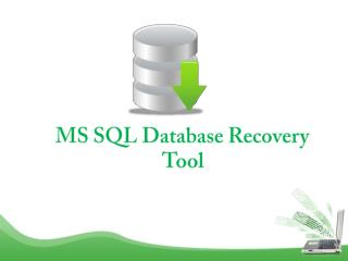 MS SQL Database Recovery Software