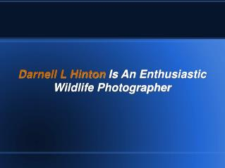 Darnell L Hinton Is An Enthusiastic Wildlife Photographer