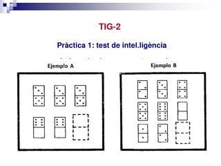 TIG-2