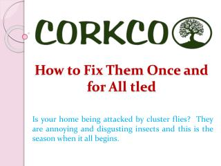 How to Fix Them Once and for All tled